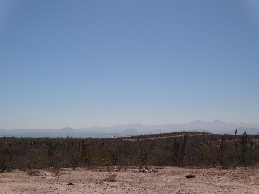 Predio Los Aripez-8