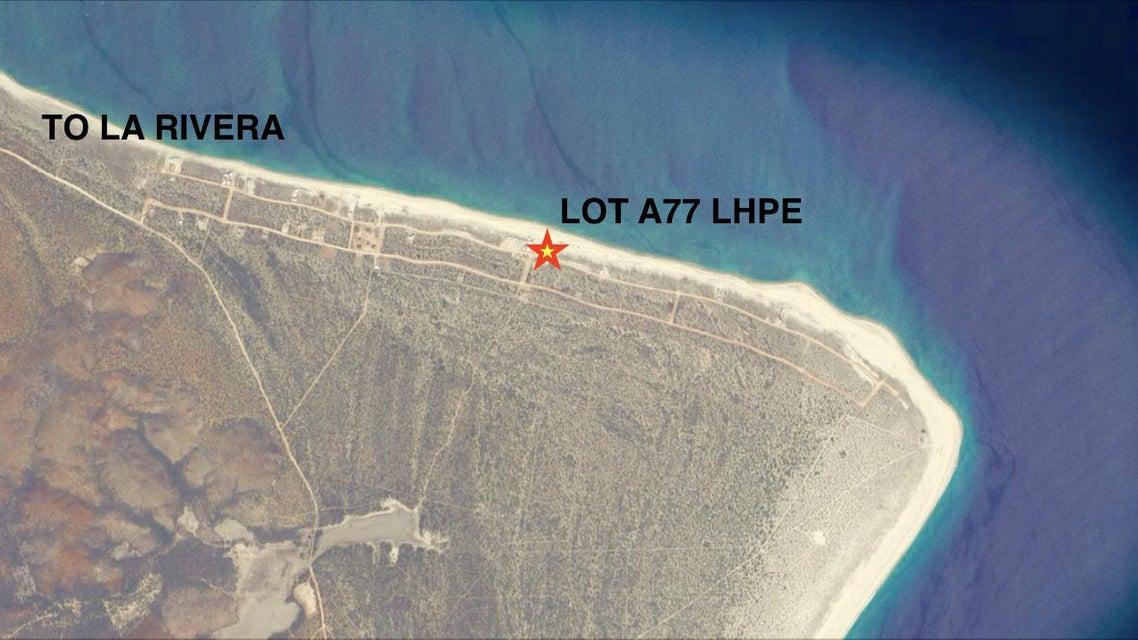 Lot # A77 LHPE-15