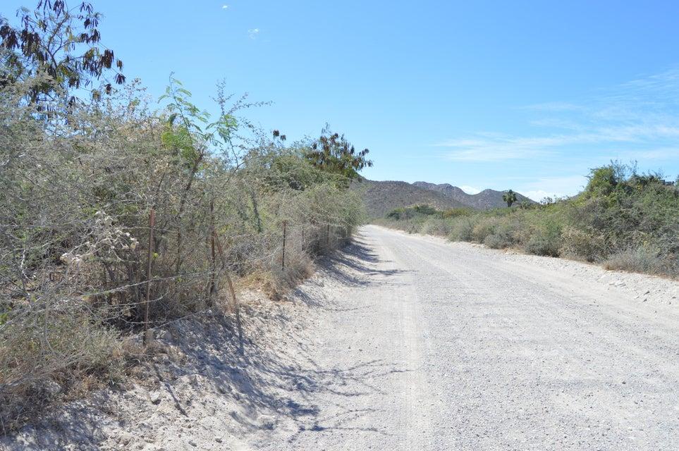Cerca de Cabo Pulmo, Mz1 A, #8-3