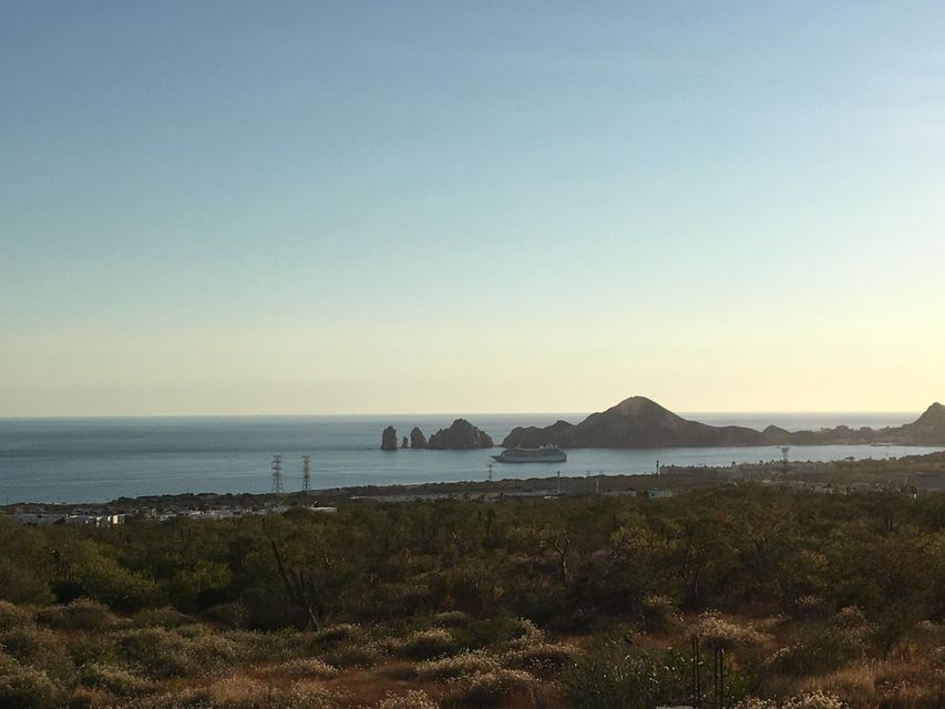 Cabo Orchard-1