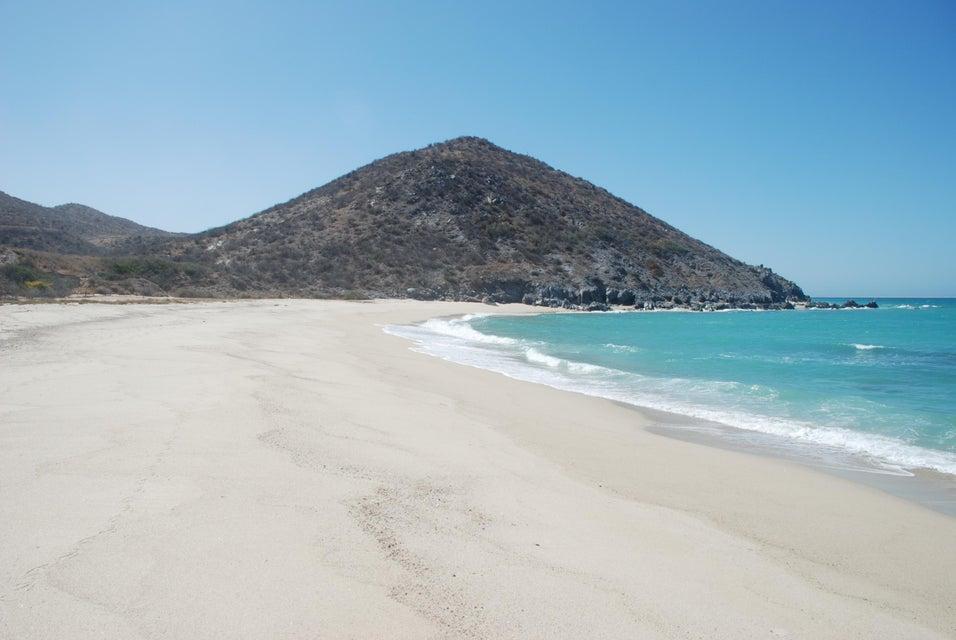 Las Barracas  Cabo Pulmo-9