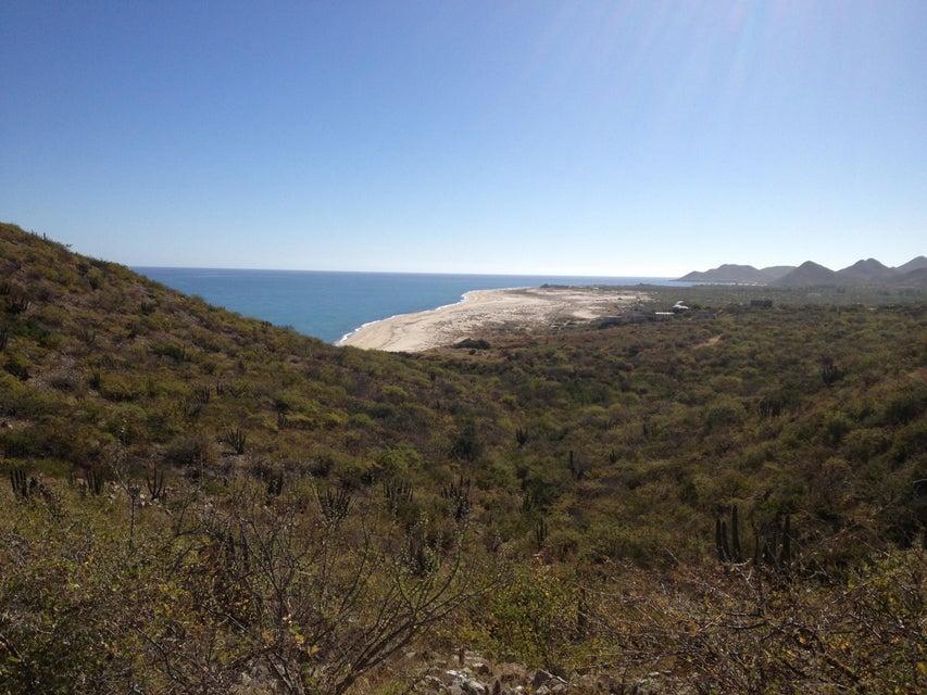 Las Barracas  Cabo Pulmo-12