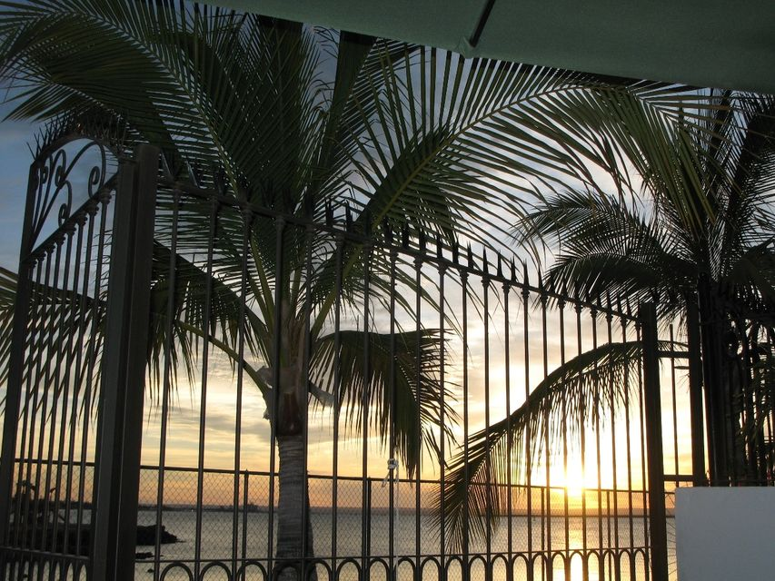 Palmira Marina #4-25