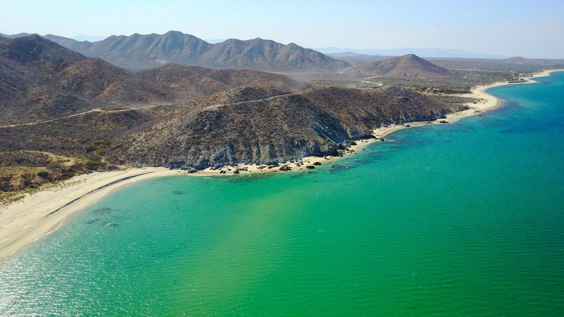 Las Barracas  Cabo Pulmo-4