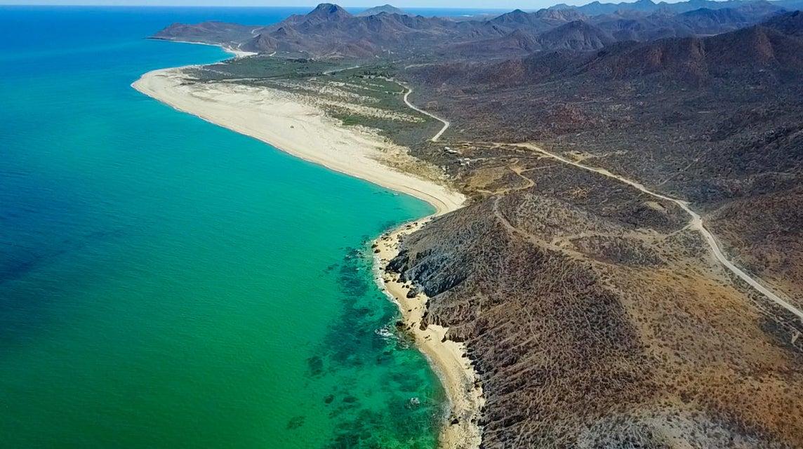 Las Barracas  Cabo Pulmo-3