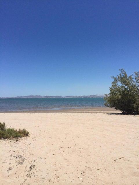 Irene beach front-1