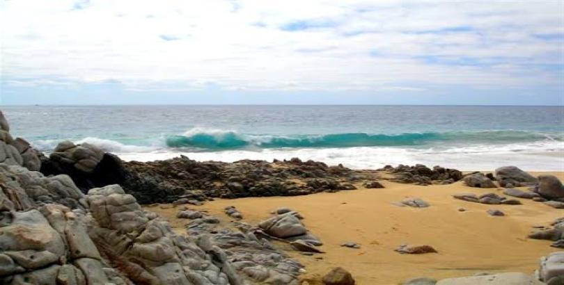Dos Playa - Migrino-6