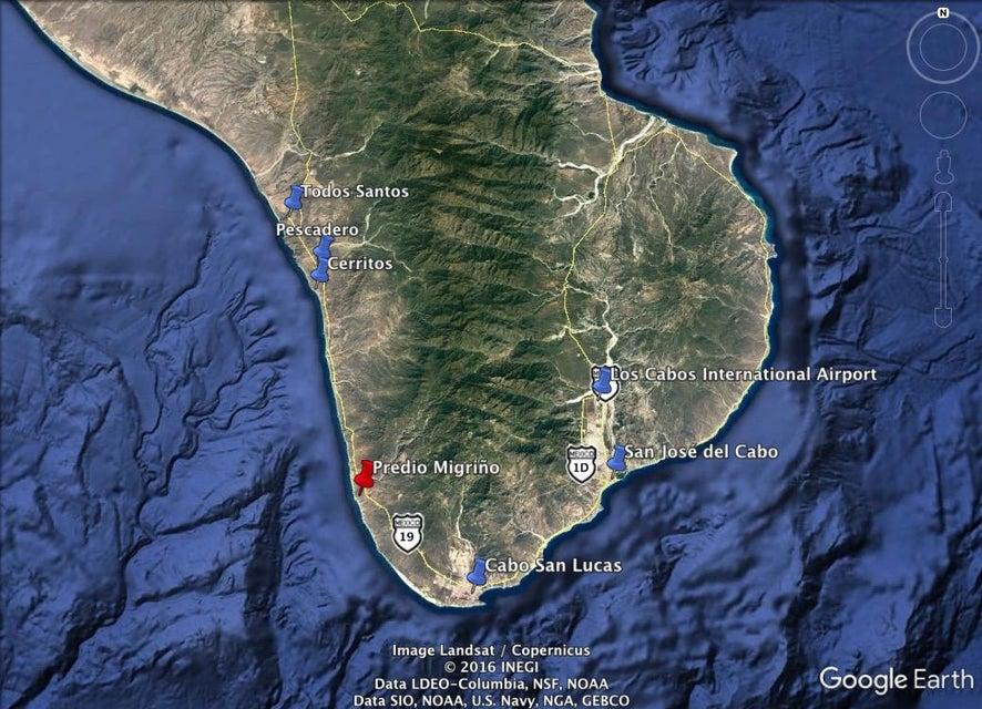 Dos Playa - Migrino-8