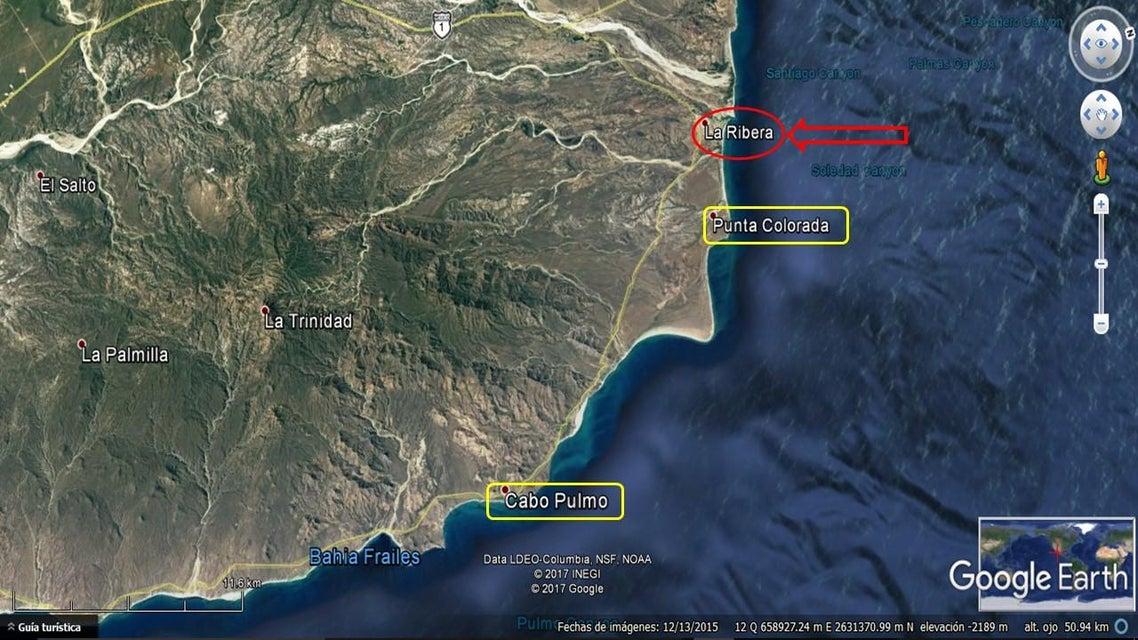 Costa Palmas Marina-3