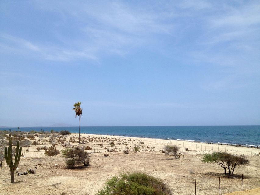 Boca del Alamo Beachfront-2