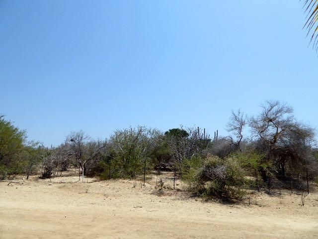 Pedregal Lot-3