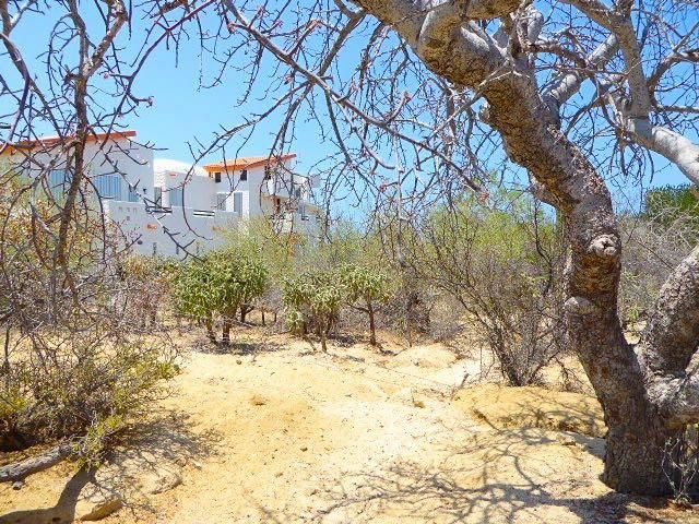 Pedregal Lot-4