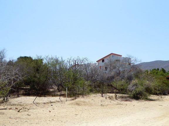 Pedregal Lot-8