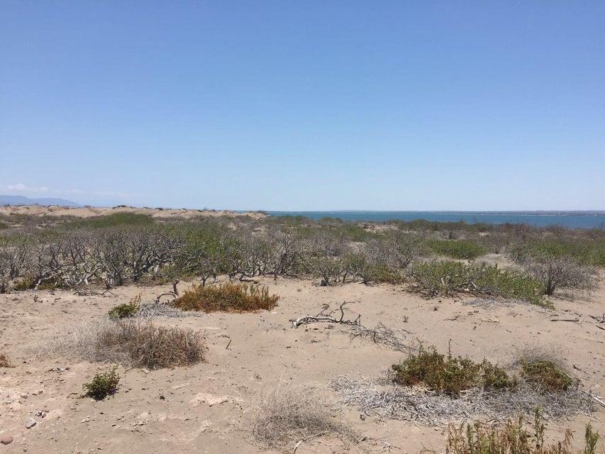 Land Mogote Dobrilla-6