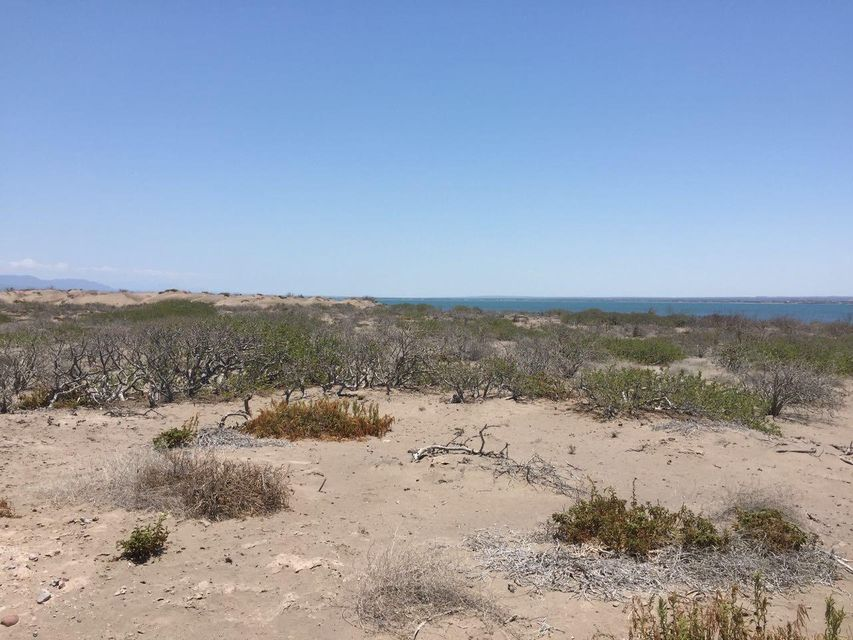 Land Mogote Dobrilla-8