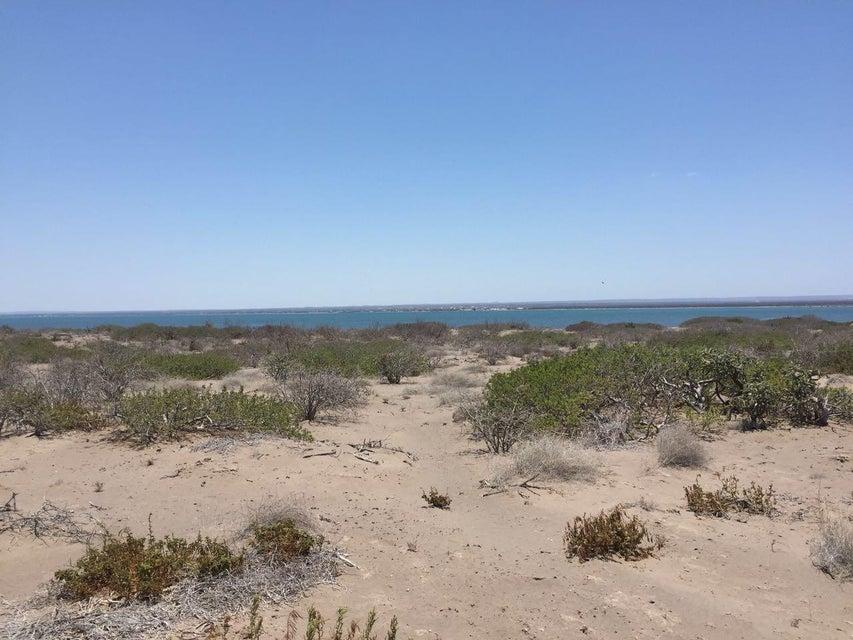 Land Mogote Dobrilla-9