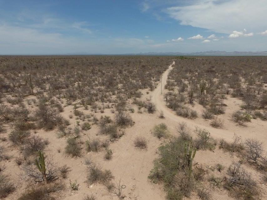 Rancho Zacatecas-6