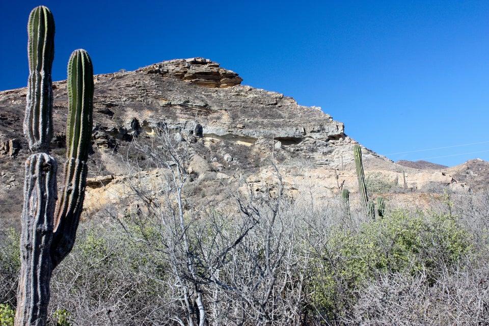 Rancho Las Ninas-6