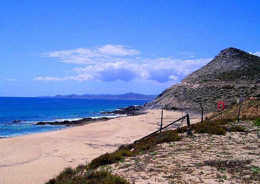 Punta Gorda-1
