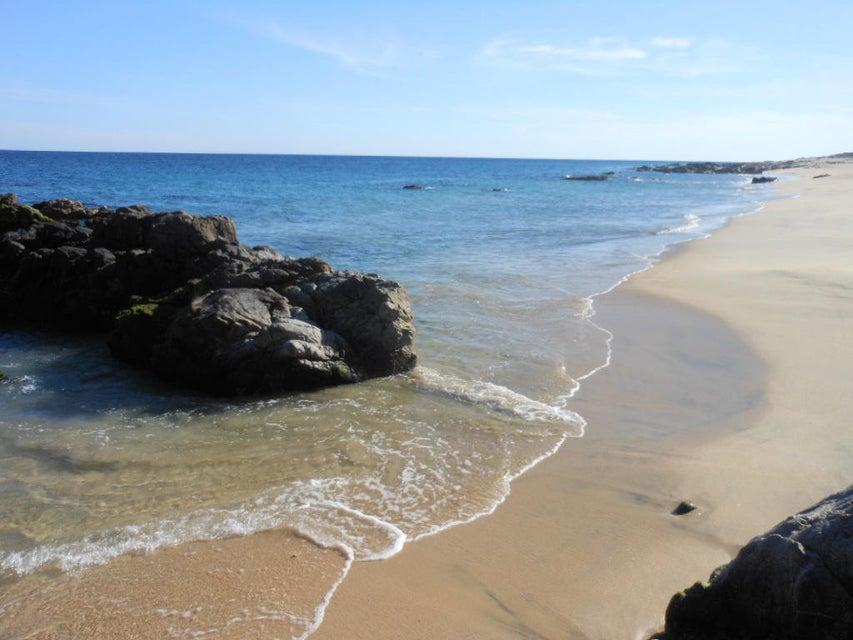 Punta Gorda-2