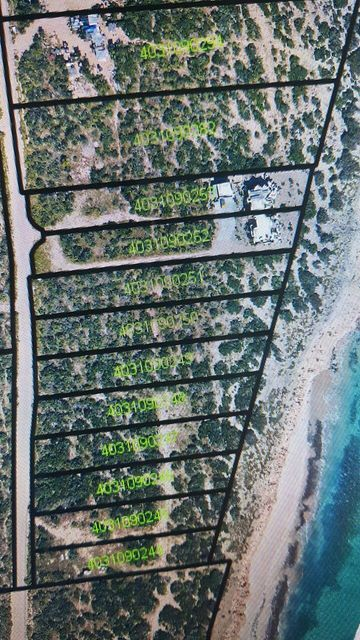 Cabo Pulmo Beachfront parcel-16