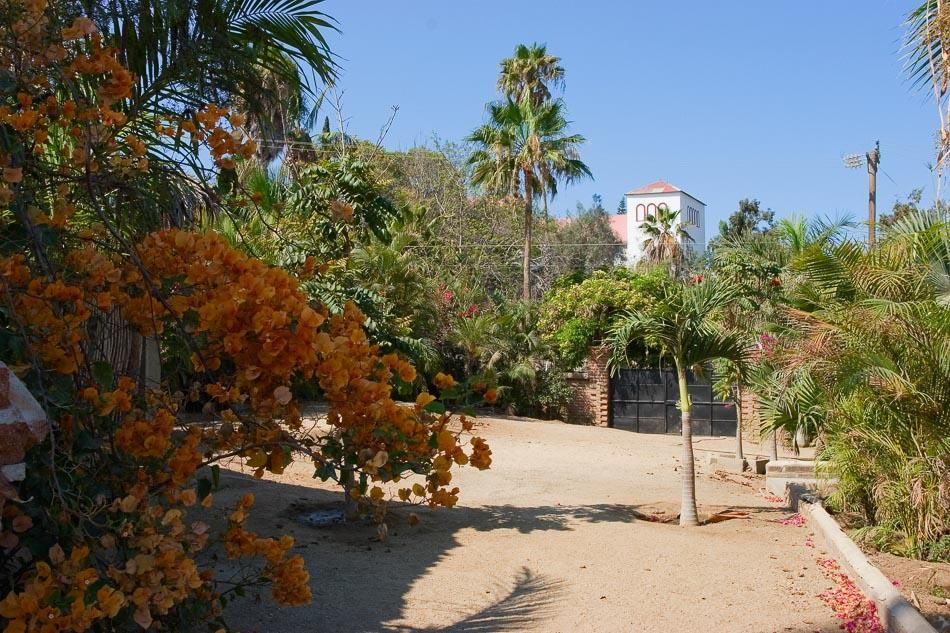Todos Santos Historic Estates-39
