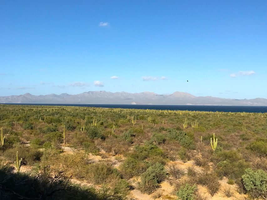Oceanfront Land-2