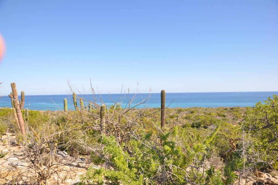 Las Tinas Beachfront-3