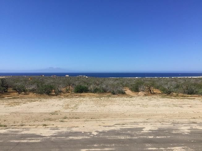TWO HOMES ON 3.57 BEACH ACRES-5