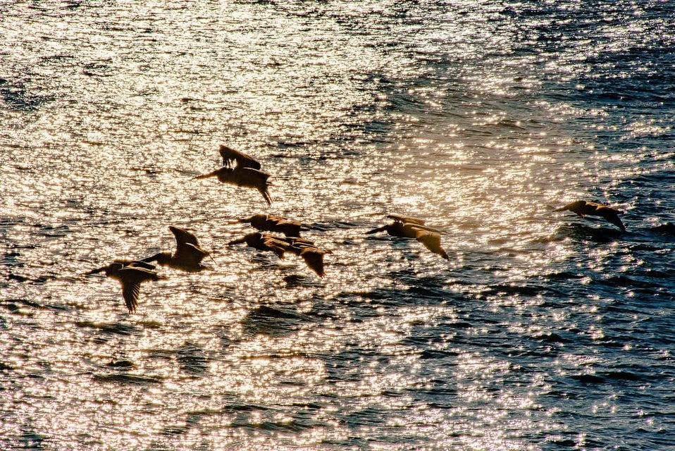 Boca del Salado Lote 185 Hect-7