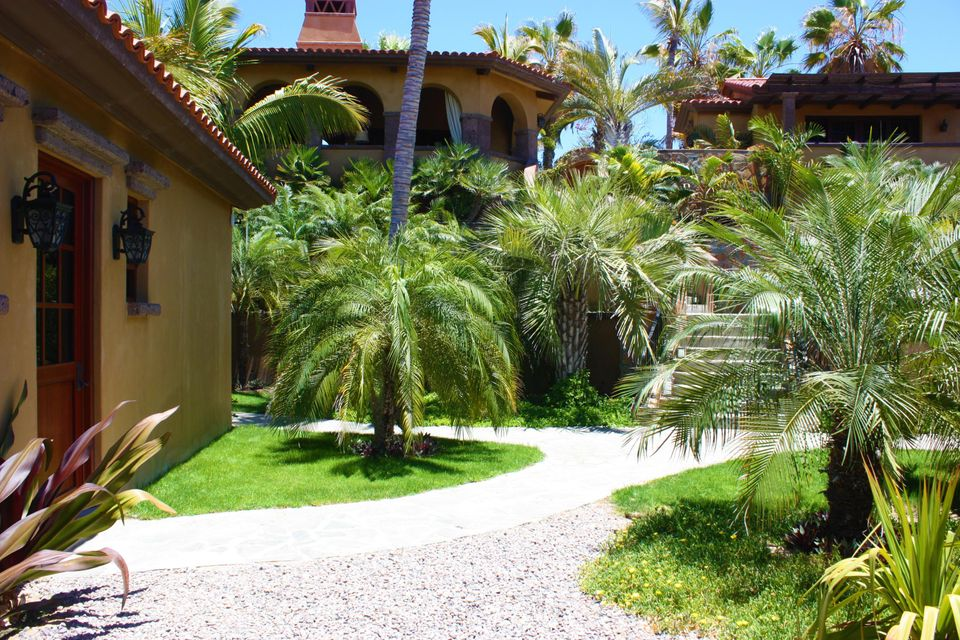 PALM ORCHARD Oceanfront 8-15