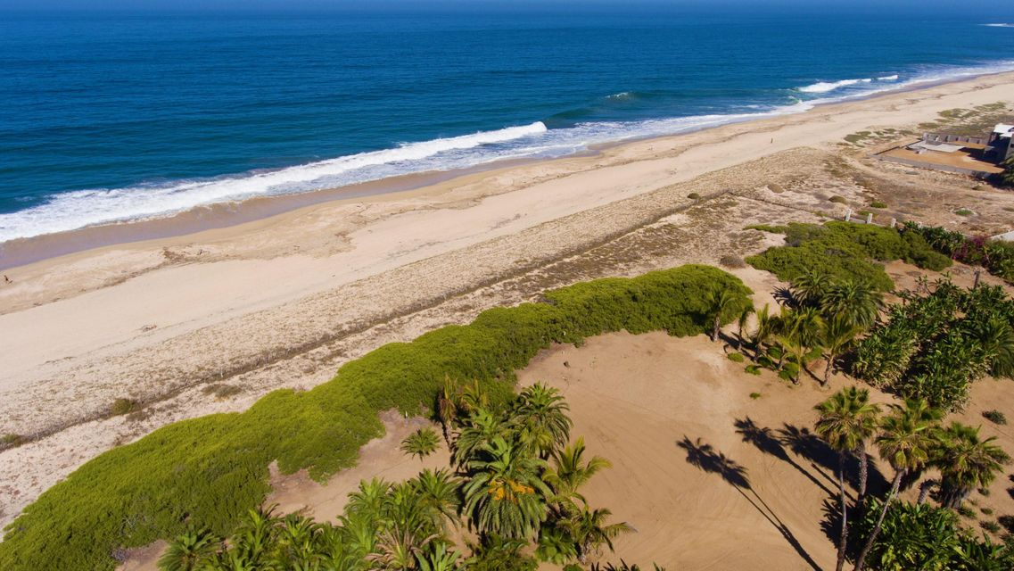 PALM ORCHARD OceanFront 6-24