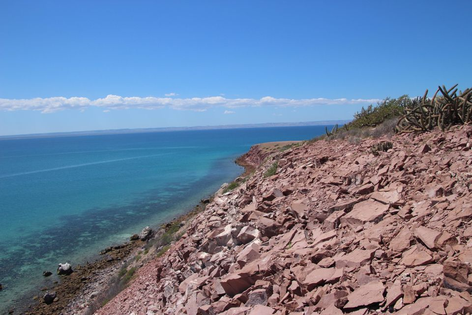 Punta Colorado-8