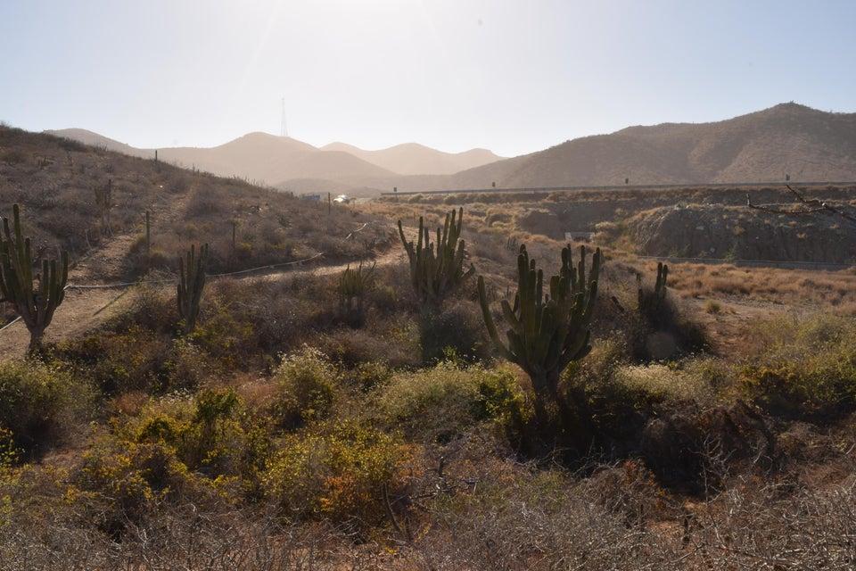 Demasias de San Jacinto-4