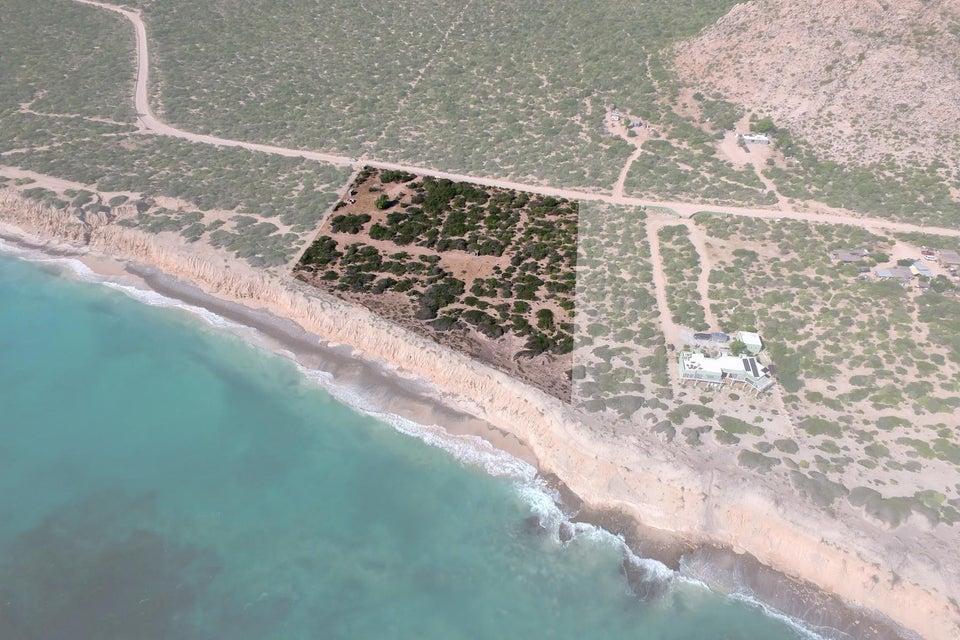 Cabo Pulmo Beachfront parcel-1