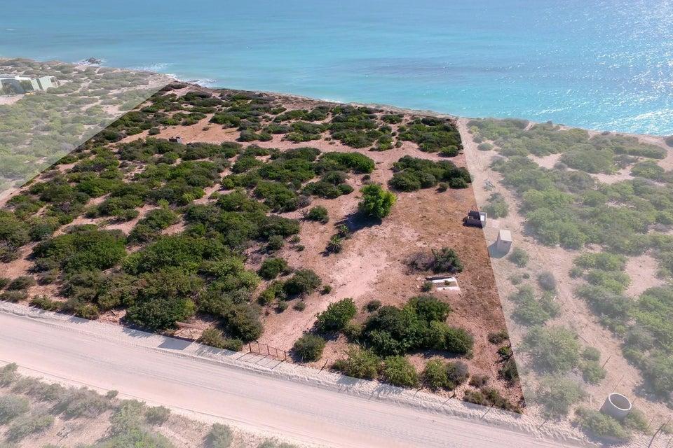 Cabo Pulmo Beachfront parcel-3