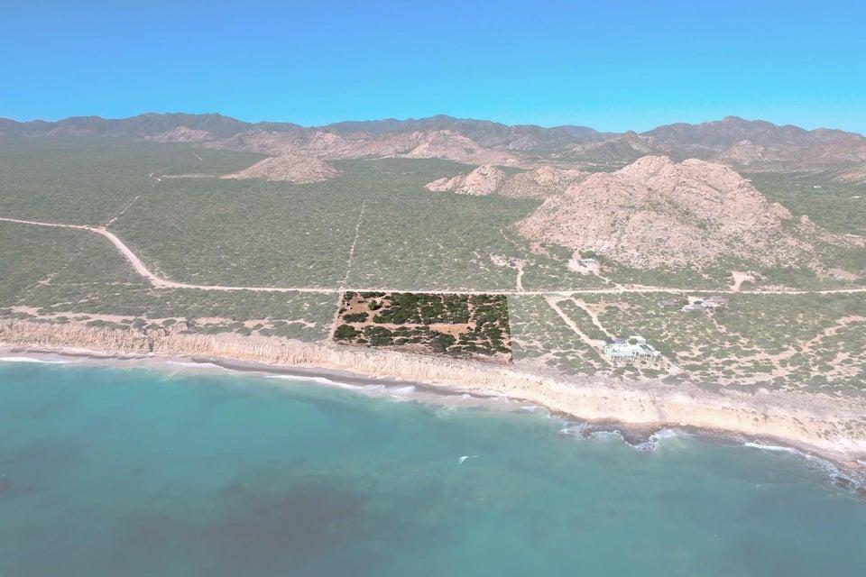 Cabo Pulmo Beachfront parcel-4