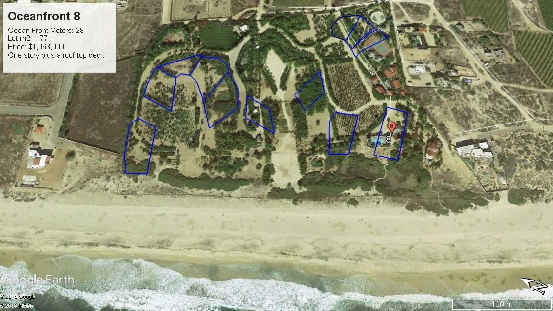 PALM ORCHARD Oceanfront 8-13