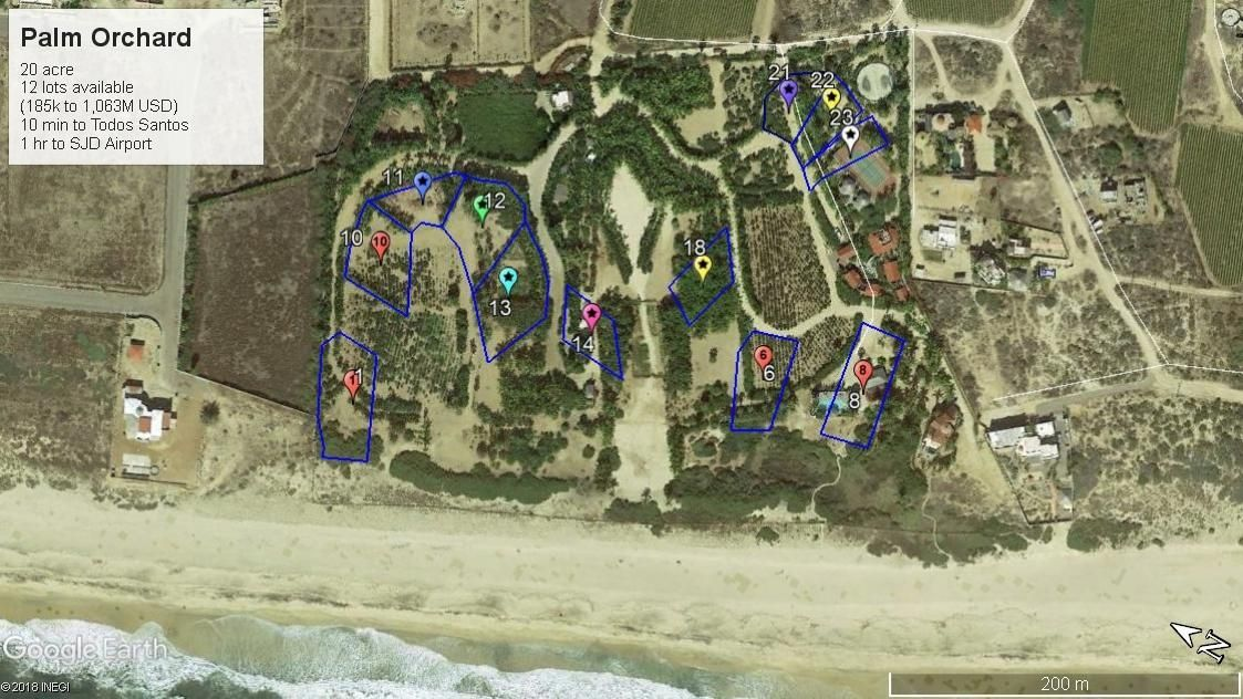 PALM ORCHARD OceanFront 1-11