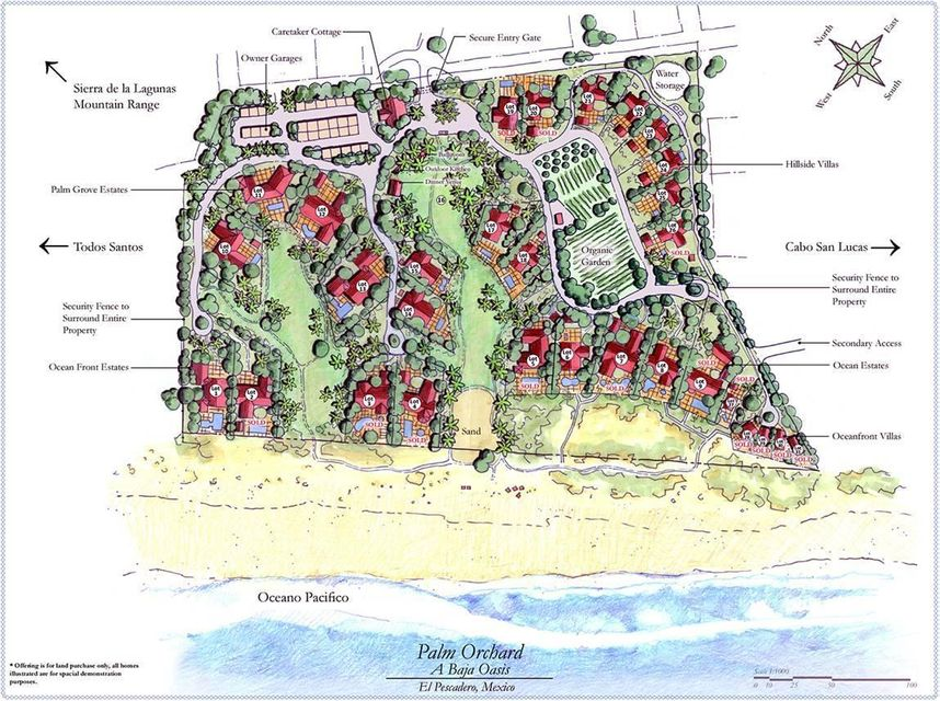 PALM ORCHARD OceanFront 1-30