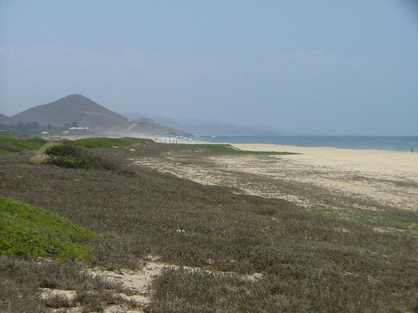 San Pedrito Beach Block 320-13