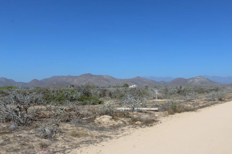 Desarrollo Rancho Nuevo-1