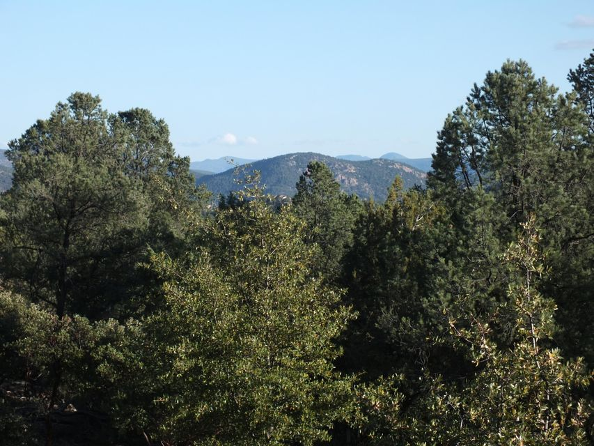 902 N N Blazing Star Circle Payson, AZ 85541 - MLS #: 72943