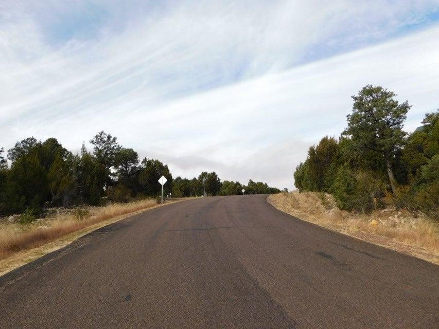 3400 HIGH COUNTRY DRIVE Heber, AZ 85928 - MLS #: 77178