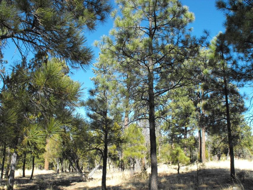 2962 Coyote Ridge Happy Jack, AZ 86024 - MLS #: 77440