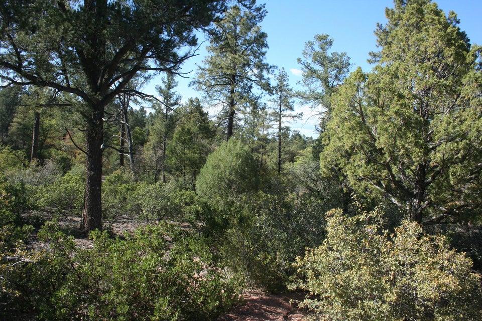 2403 E E Big Forest Payson, AZ 85541 - MLS #: 78084