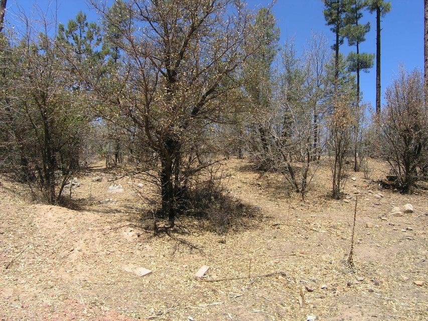 Lot 20 Woodland Walk Pine, AZ 85544 - MLS #: 78102
