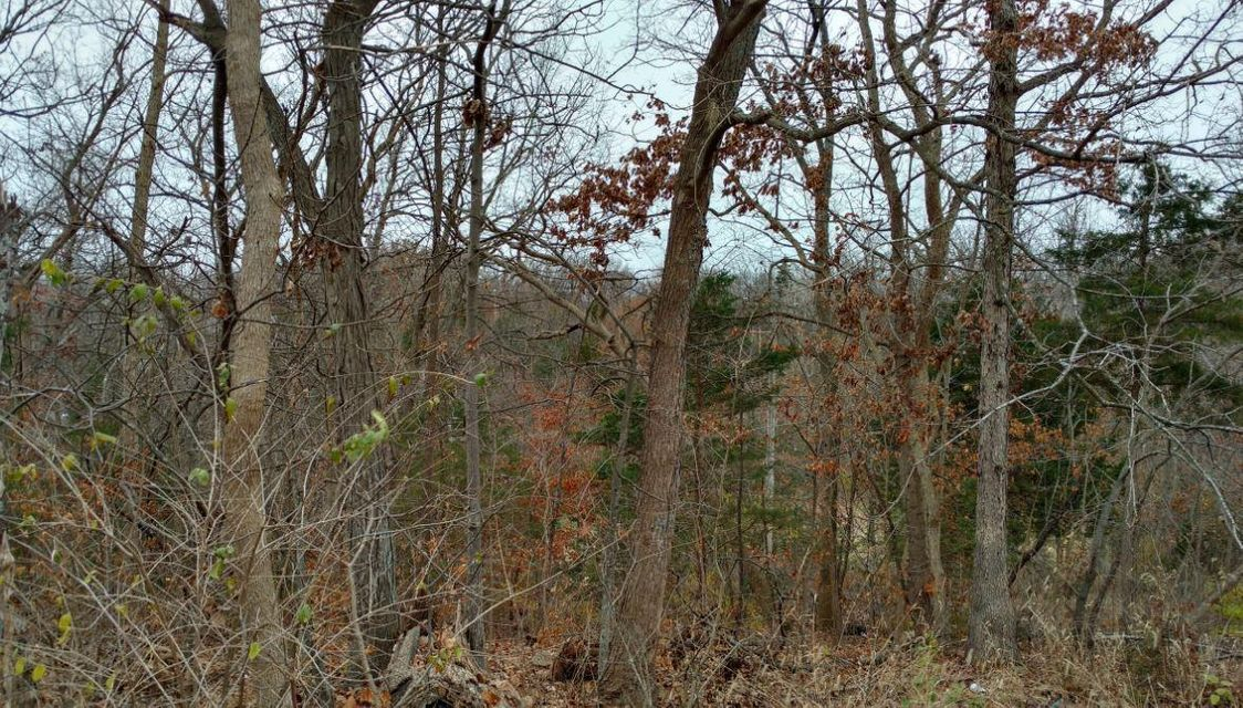 LOT 25 E SOUTH ELIZABETH, COLUMBIA, MO 65202