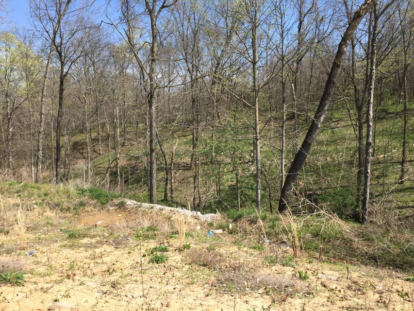 LOT 304 RUDCHESTER CT, COLUMBIA, MO 65301