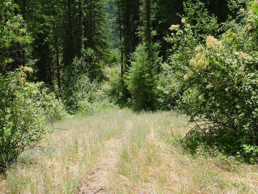 Land for Sale at North Side Road North Side Road Calder, Idaho 83808 United States